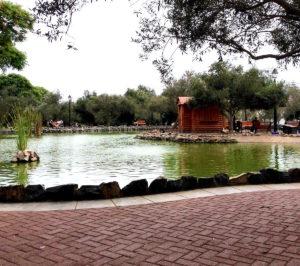 Laguna del Parque El Olivar en Lima